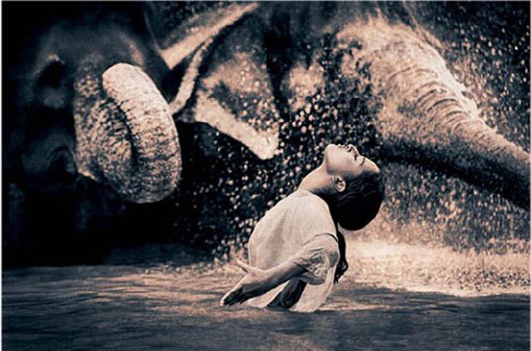 Conte zen : Renki l'éléphant